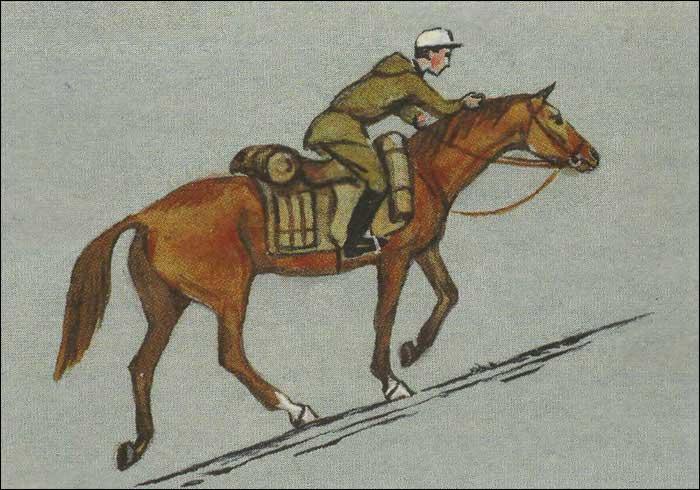 Верховая езда по склону в гору.  Правильное положение всадника. - фото.