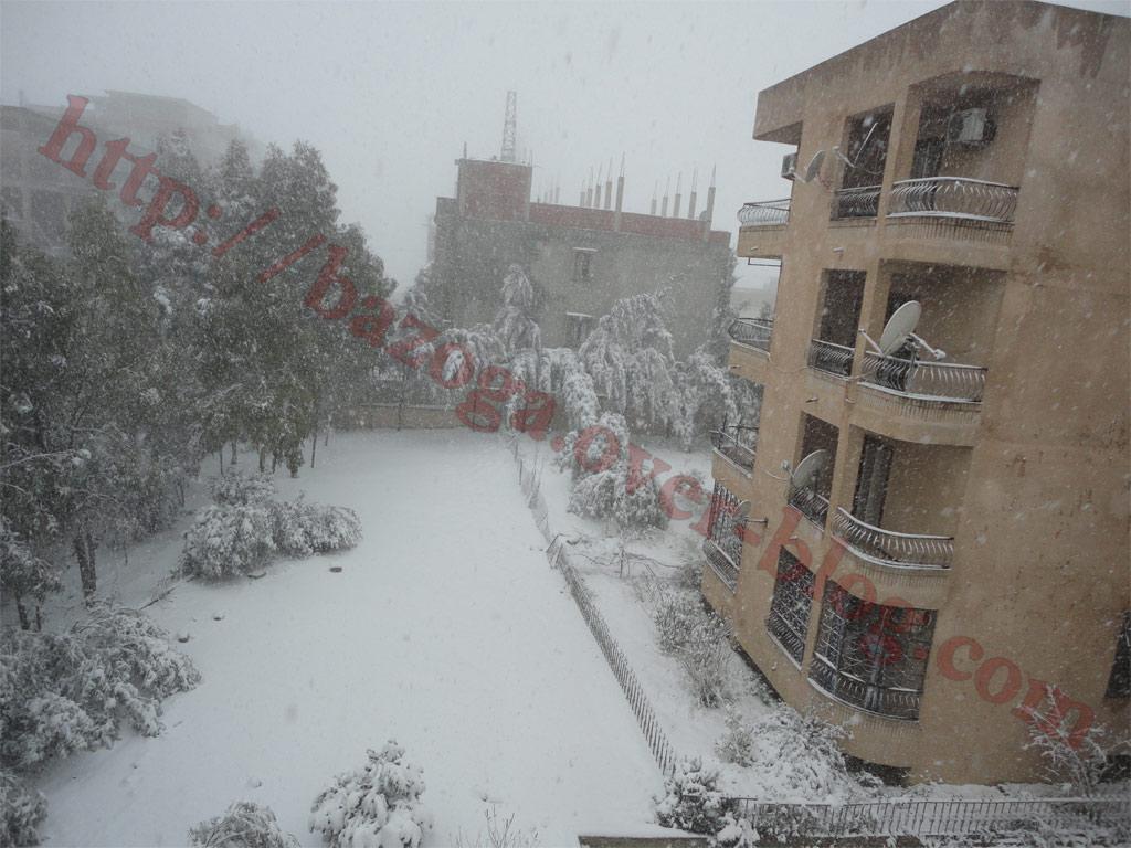 http://i41.servimg.com/u/f41/09/01/02/20/neige110.jpg