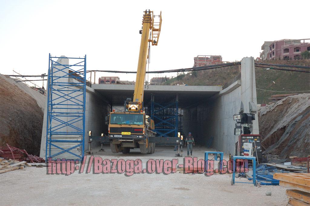 http://i41.servimg.com/u/f41/09/01/02/20/photo-12.jpg
