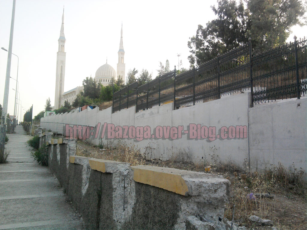 http://i41.servimg.com/u/f41/09/01/02/20/photo058.jpg