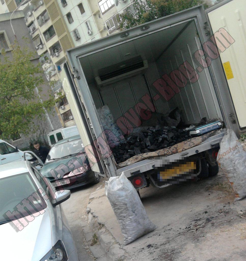 http://i41.servimg.com/u/f41/09/01/02/20/photo180.jpg
