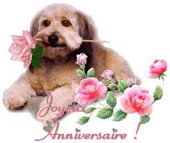 chre mamie je te souhaite un trs bon et heureux anniversaire que ce jour soit rempli de joie de bonheur et ralise tous les dsirs de ton cur