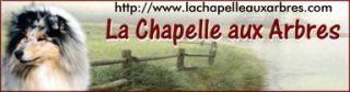 La chapelle aux arbres