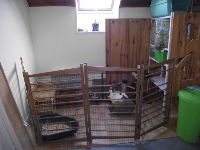 Le terrier des lapins afficher le sujet enclos int rieur for Parc d interieur
