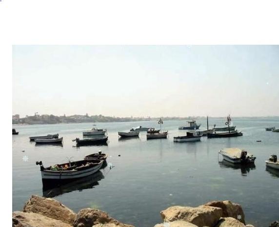 Port de Peche Tamenfoust