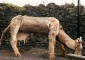 le forum de gilma le sculpteur