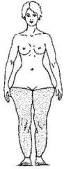 мягкий жир на животе как избавиться