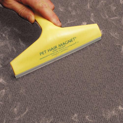 Comment enlever les odeurs et poils de chien dans sa voiture - Comment enlever odeur urine de chat sur tapis ...