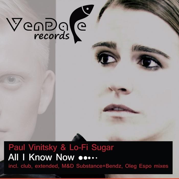 Paul Vinitsky & Lo-Fi Sugar – All I Know Now [Vendace Records]