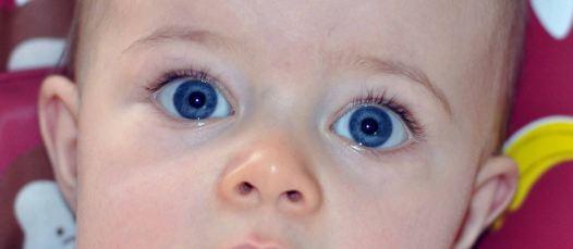 Couleur des yeux de b b b b s de juin 2011 b b s de l 39 ann e forum grossesse b b - Yeux bleu fonce ...