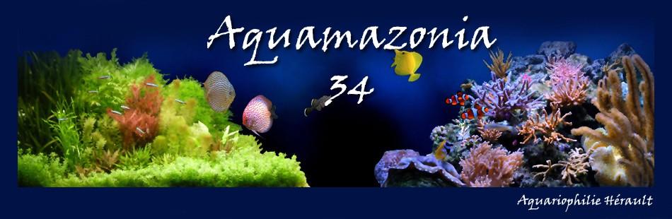 Aquariophilie Herault