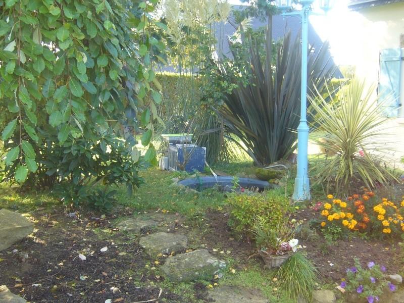 Filtre maison pour bassin bien choisir les plantes et for Acheter des plantes par internet