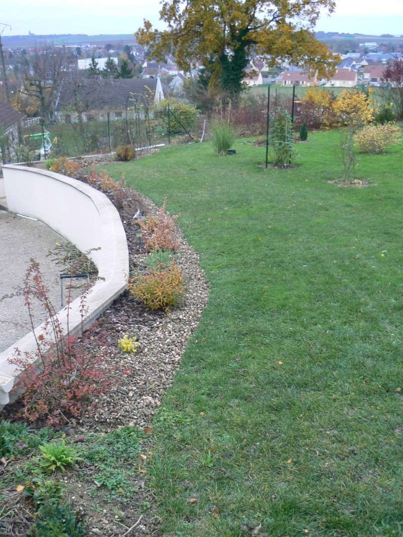 album d 39 automne page 13 au jardin forum de jardinage. Black Bedroom Furniture Sets. Home Design Ideas