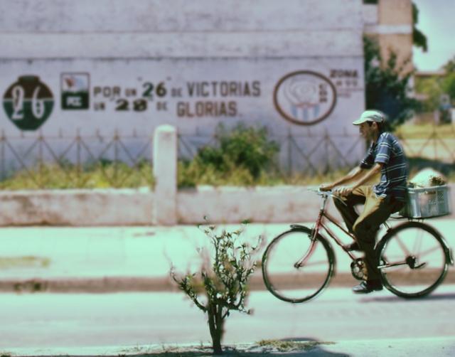 bicicl10.jpg