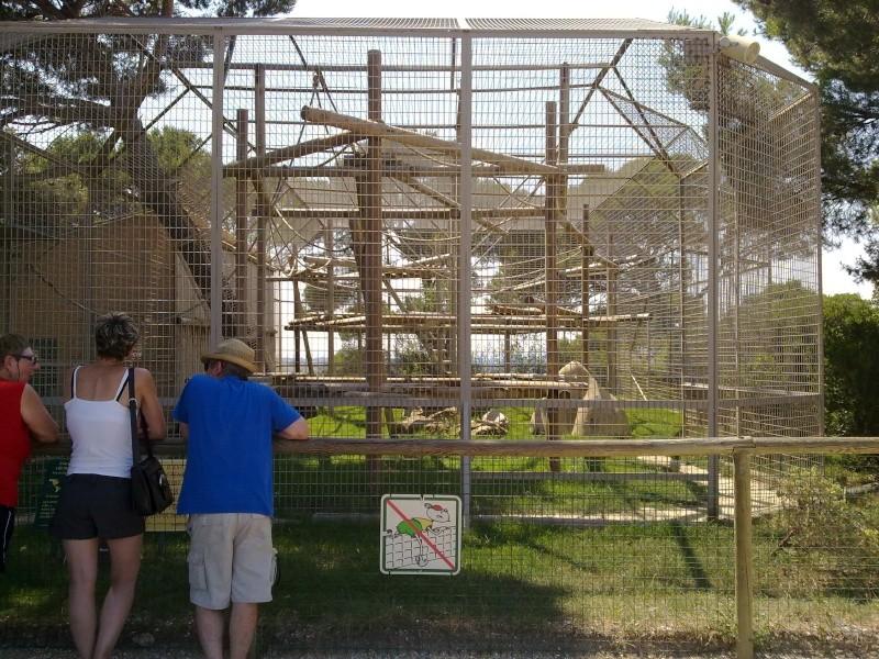 Zoo De La Barben 13