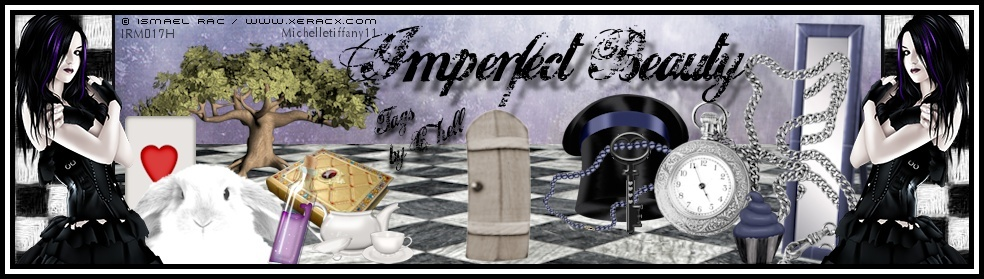 ♥ Imperfect Beauty - Tags By Chell ♥