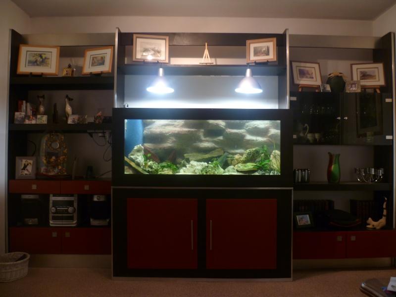 aquarium en bois fait maison -> Aquarium Maison Bois