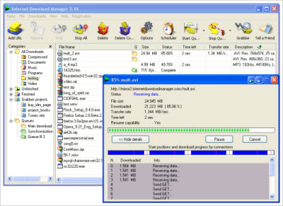 Tonec Inc. Internet Download Manager v6.07.5 WinALL Incl. Keygen and Patch