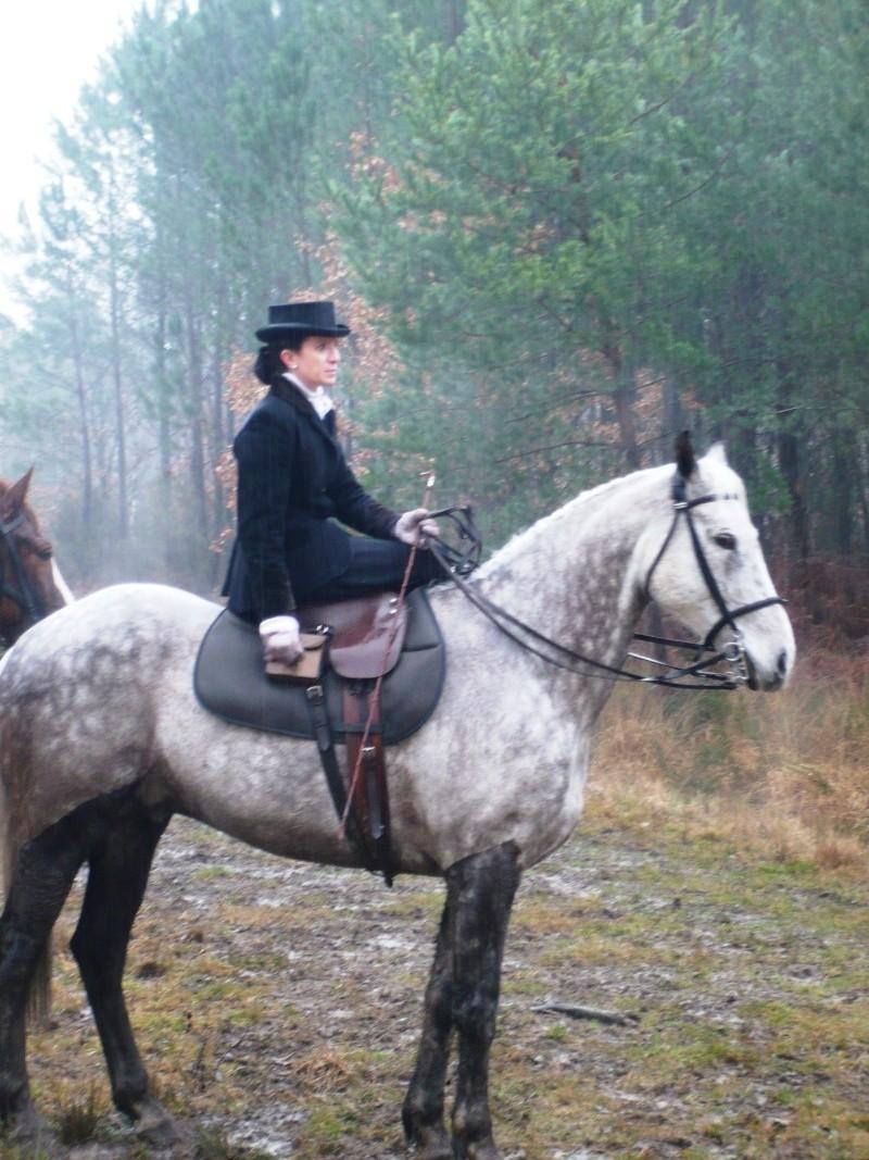 Le cheval de chasse et son equipement - Equipement de chasse ...