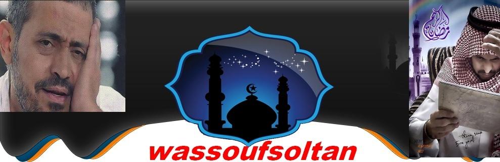 wassoufsoltan.net