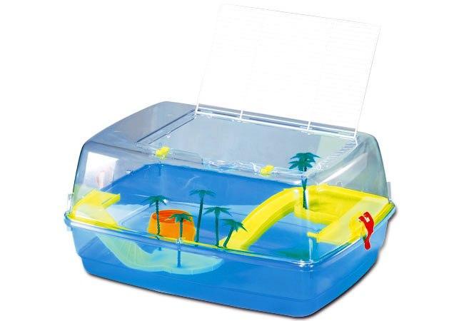 Guida no alle vaschette piccole per tartarughe for Vasca per tartarughe grandi