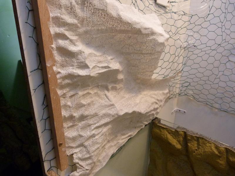 Terrarium 70x70x160 physignathus mat riel terrariophile installations le monde des reptiles - Decor fond terrarium desertique ...