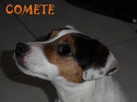 comete12.jpg