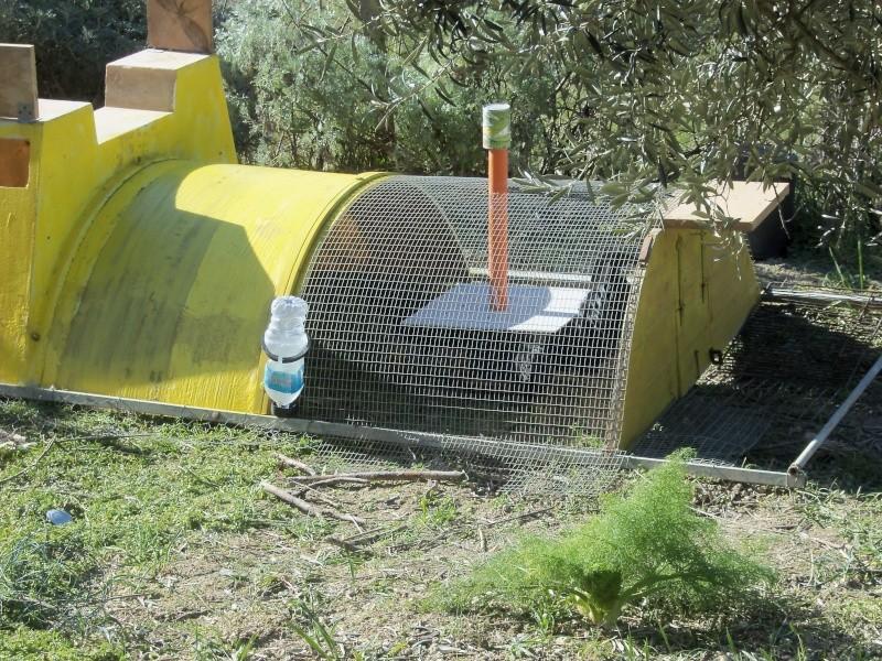 costruzione pollaio mobile