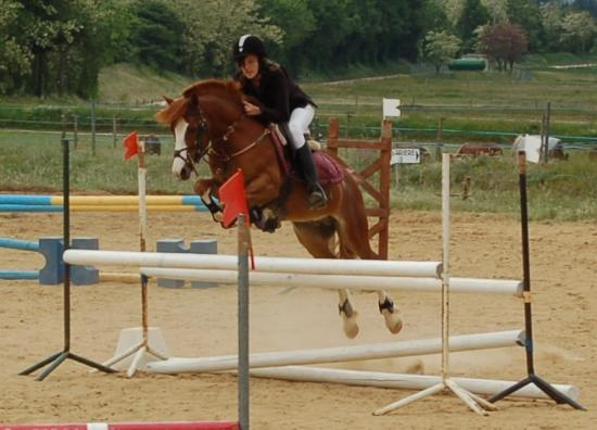 poney b cso