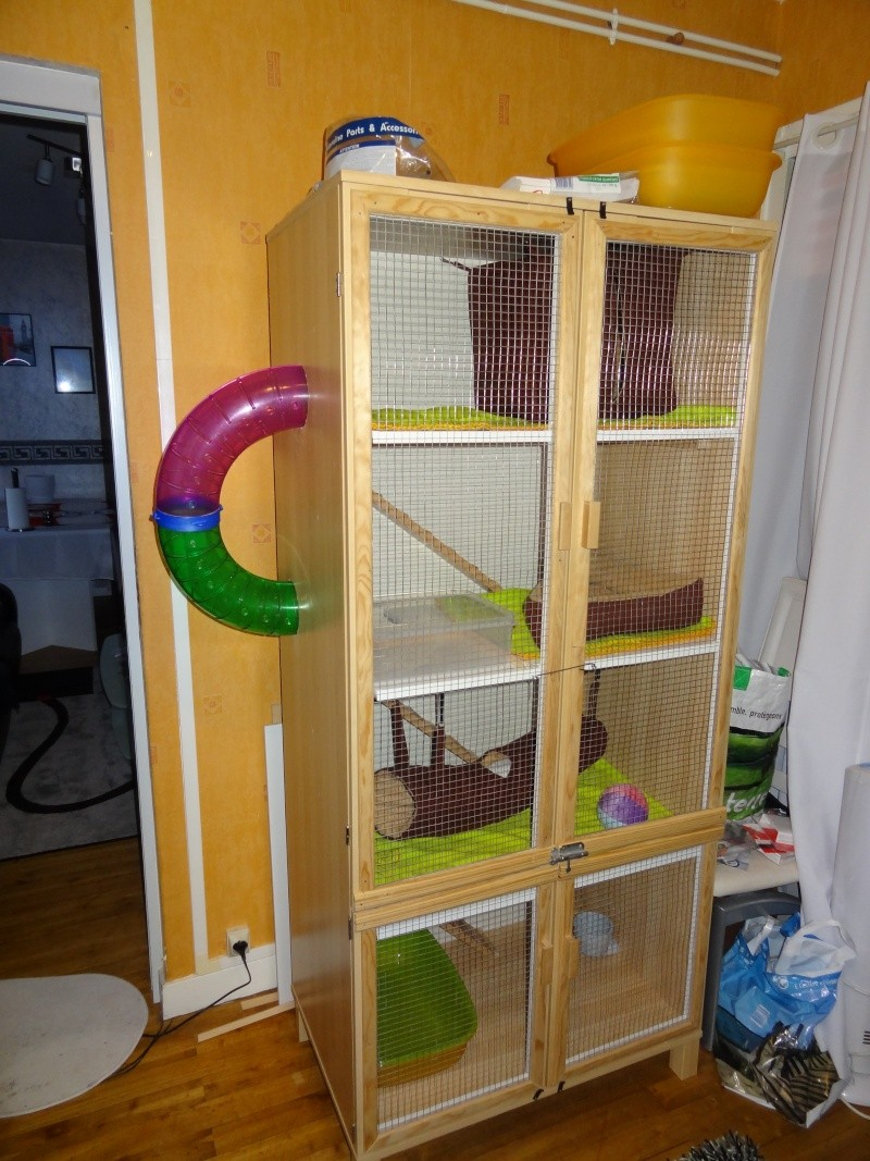 passionnement furets forum furet vison mustelides afficher le sujet ma cage home made. Black Bedroom Furniture Sets. Home Design Ideas