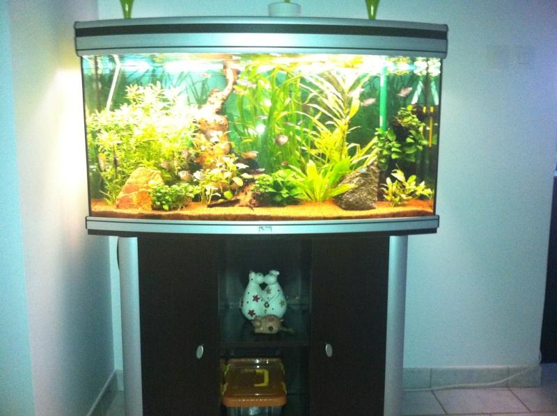 Vend aquarium 180l aquathlantis 27 for Vend aquarium