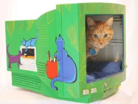 Fabriquer Une Cabane En Bois Pour Chat : dont vous ne savez pas quoi faire ? Pourquoi pas un panier pour chat