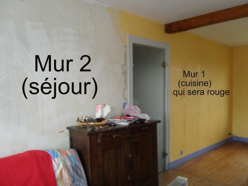 Maison en r novation rafra chir quelles couleurs pour for Peinture sejour deux couleurs