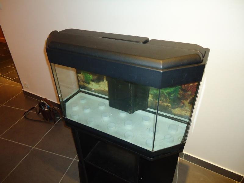 aquarium 100l vendre. Black Bedroom Furniture Sets. Home Design Ideas