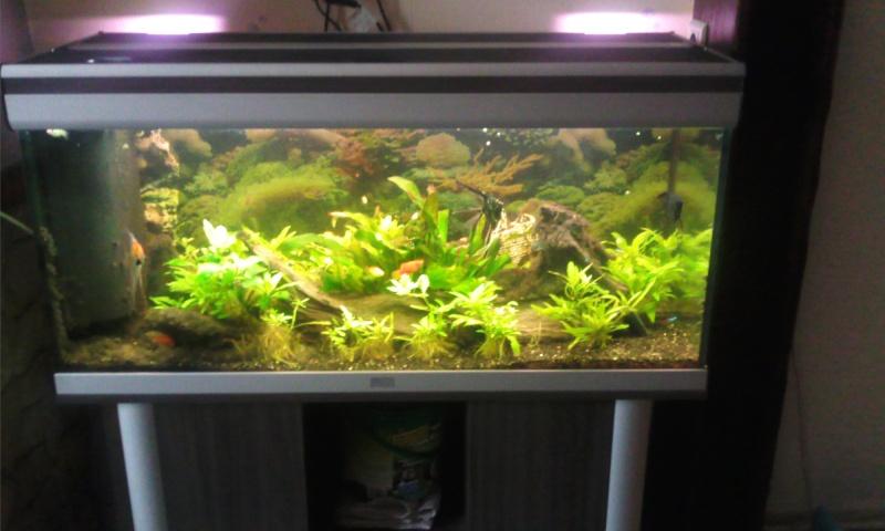 Rechercher - Aquarium 200 litres avec meuble ...