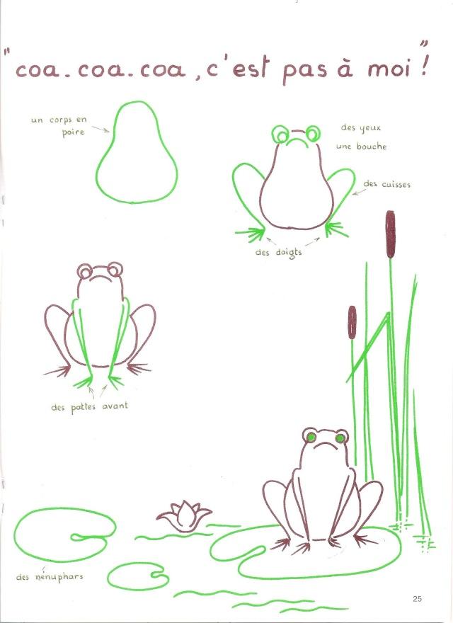 Comment dessiner grenouille - Dessiner une grenouille ...