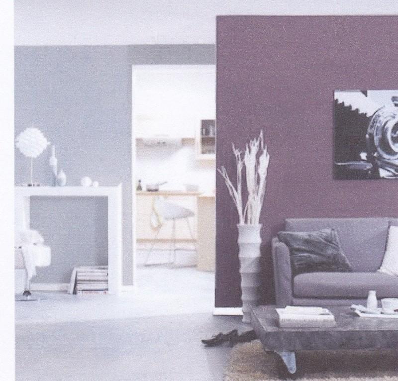 Chambre parentale associations de couleurs aubergine gris - Couleur prune et gris ...